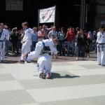 hapkido_2005-baunatal_0005