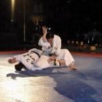 hapkido_2005-budoshow-brno_0002