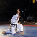 hapkido_2005-budoshow-brno_0003