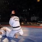 hapkido_2005-budoshow-brno_0004
