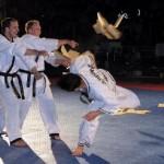 hapkido_2005-budoshow-brno_0010