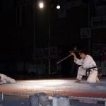 hapkido_2005-budoshow-brno_0013