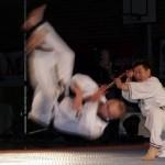 hapkido_2005-budoshow-brno_0014