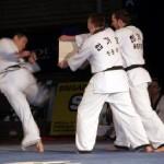 hapkido_2005-budoshow-brno_0016