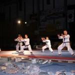 hapkido_2005-budoshow-brno_0019