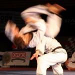 hapkido_2005-budoshow-brno_0024