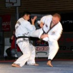 hapkido_2005-budoshow-brno_0028