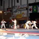 hapkido_2005-budoshow-brno_0031