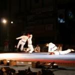 hapkido_2005-budoshow-brno_0032