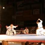 hapkido_2005-budoshow-brno_0033
