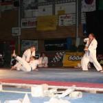 hapkido_2005-budoshow-brno_0034