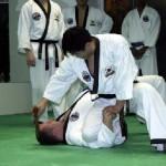 hapkido_2005-budoshow-prag_0002