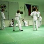 hapkido_2005-budoshow-prag_0009