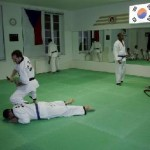 hapkido_2005-budoshow-prag_0011