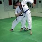 hapkido_2005-budoshow-prag_0012