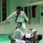 hapkido_2005-budoshow-prag_0018