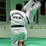 hapkido_2005-budoshow-prag_0021