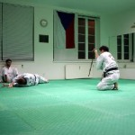 hapkido_2005-budoshow-prag_0022