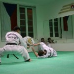 hapkido_2005-budoshow-prag_0031