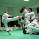 hapkido_2005-budoshow-prag_0034