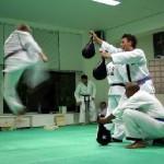 hapkido_2005-budoshow-prag_0035