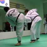 hapkido_2005-budoshow-prag_0036