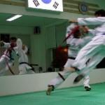 hapkido_2005-budoshow-prag_0038