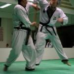 hapkido_2005-budoshow-prag_0041