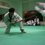 hapkido_2005-budoshow-prag_0042