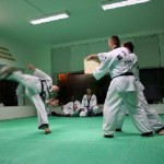 hapkido_2005-budoshow-prag_0043
