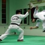 hapkido_2005-budoshow-prag_0044