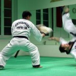 hapkido_2005-budoshow-prag_0045