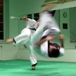 hapkido_2005-budoshow-prag_0048