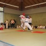 hapkido_2006-dm_0083