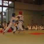 hapkido_2006-dm_0089