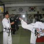 hapkido_2007-herbstlehrgang-kassel_0020