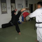 hapkido_2007-herbstlehrgang-kassel_0030