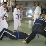 hapkido_2007-herbstlehrgang-kassel_0041
