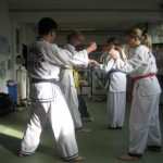hapkido_2007-herbstlehrgang-kassel_0046