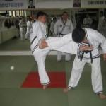 hapkido_2007-herbstlehrgang-kassel_0053