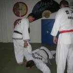 hapkido_2007-herbstlehrgang-kassel_0057