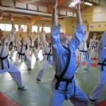 hapkido_2007-lehrgang-frankreich_0002