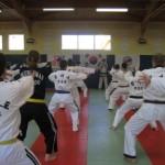 hapkido_2007-lehrgang-frankreich_0003