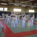 hapkido_2007-lehrgang-frankreich_0004