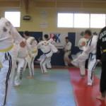 hapkido_2007-lehrgang-frankreich_0010