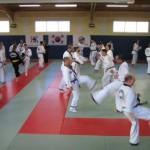 hapkido_2007-lehrgang-frankreich_0011