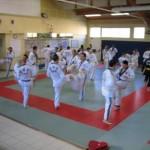 hapkido_2007-lehrgang-frankreich_0012