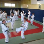 hapkido_2007-lehrgang-frankreich_0013
