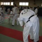 hapkido_2007-lehrgang-frankreich_0014