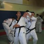 hapkido_2007-lehrgang-frankreich_0024